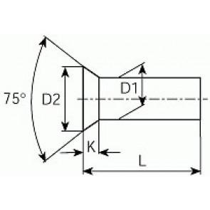 n12050661.40
